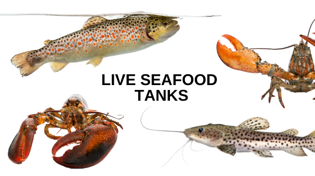 copy-of-copy-of-lobster-tanks2.png