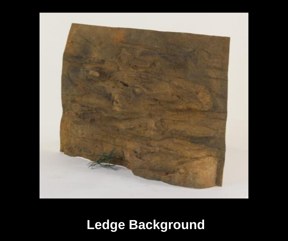 ledgequariumbackground.png