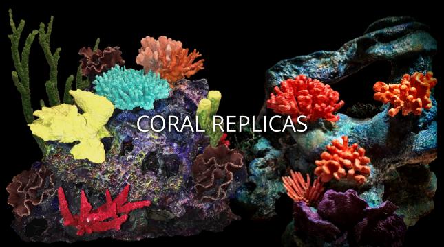 Coral Replicas