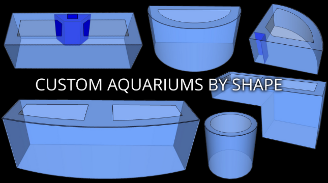 Customer Aquariums by Shape