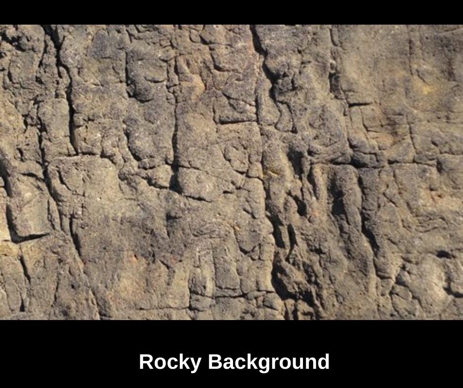 rockyquariumbackground.png