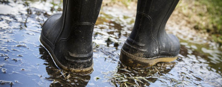 Best shooting wellies for shooting and beating