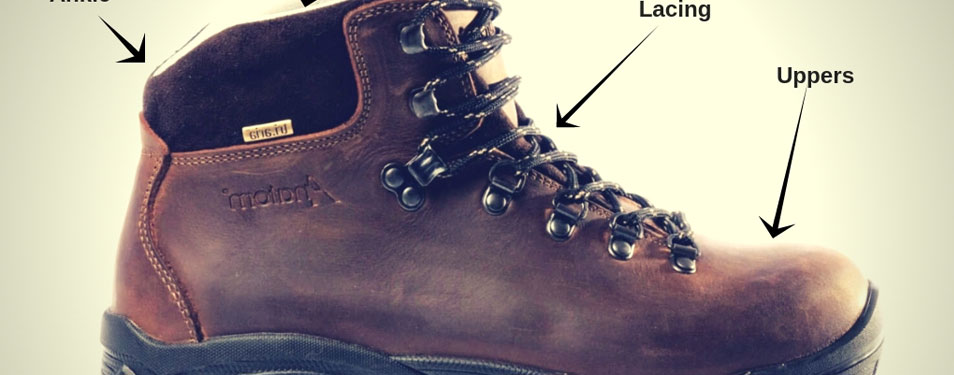 Dog Walking Boots Buying Guide   Advice on What To Wear