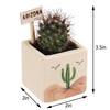 Arizona Desert Cube