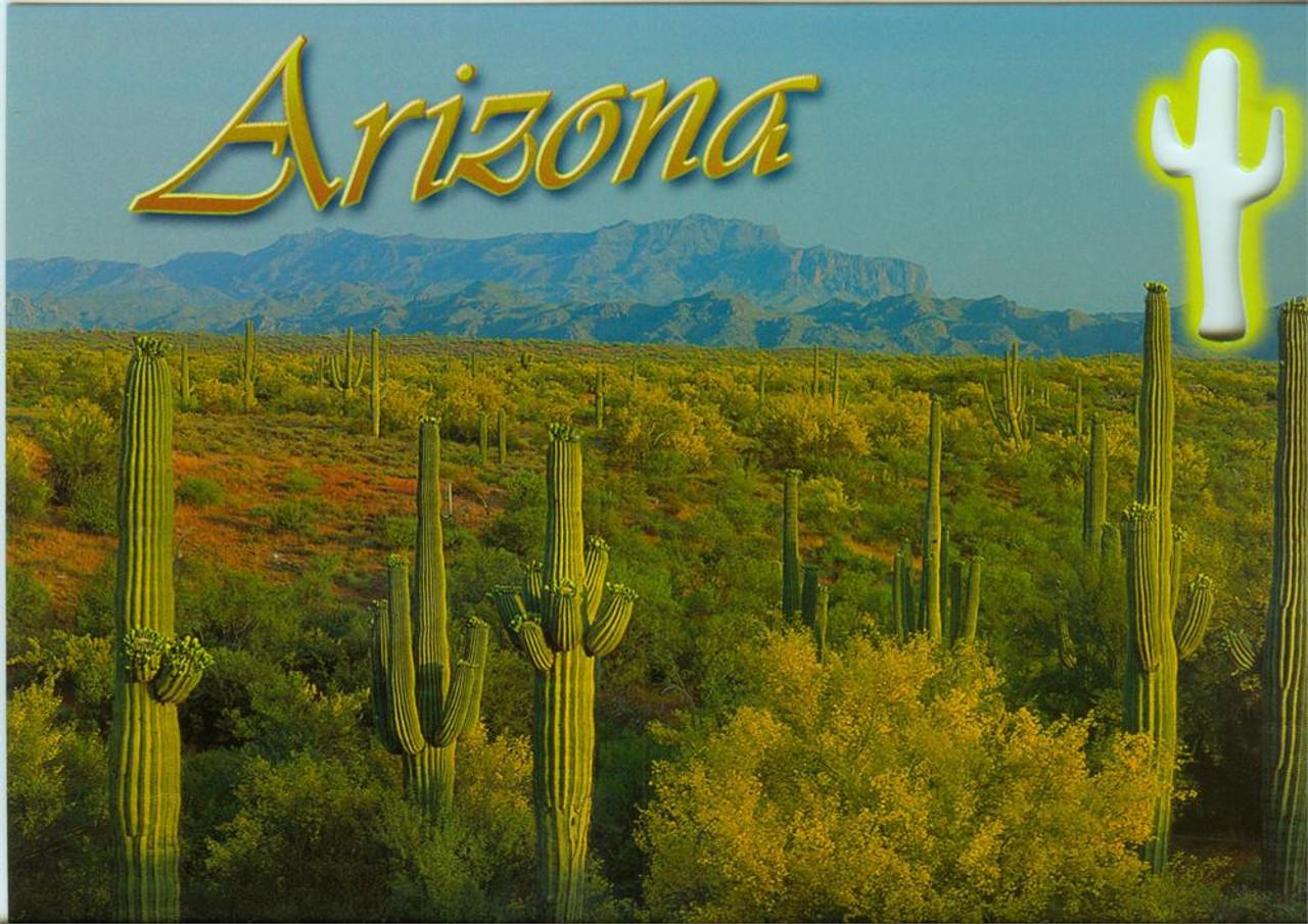 Arizona Cactus Cutout Postcard - Pack of 100