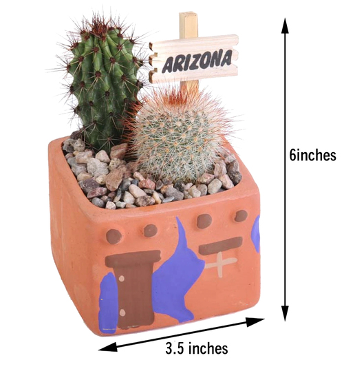 Adobe Cactus Planters - 3.5 inch