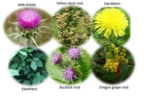 Cleansing Herbal Tea Blend