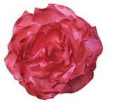 0400 Flower Pin