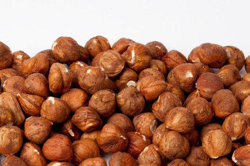 Raw Oregon Hazelnuts