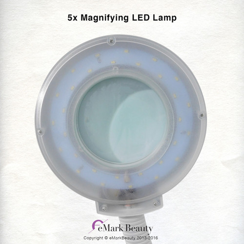 Flexible Arm Magnifying Lamp