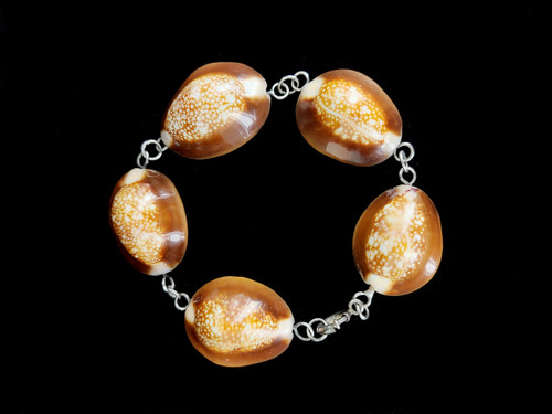 "Antique Deco Sterling Hawaiian Snakehead Cowrie Shell Link Bracelet 7.75"""