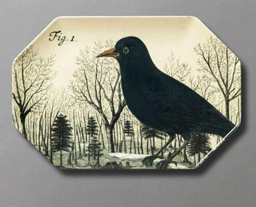 CROW Raven Bird Tray Plate PLATTER JOHN DERIAN Target Goth Witchcraft Spooky