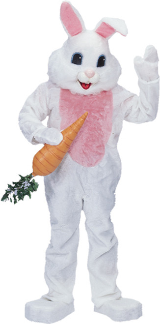 e1b76634abe Adult Rabbit Costume - Halloween Express