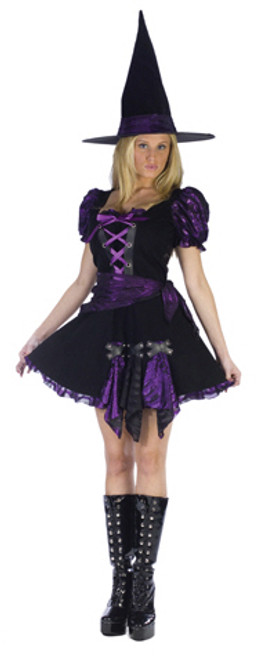 ad337bf9ca9 Witch Halloween Costumes for Adults