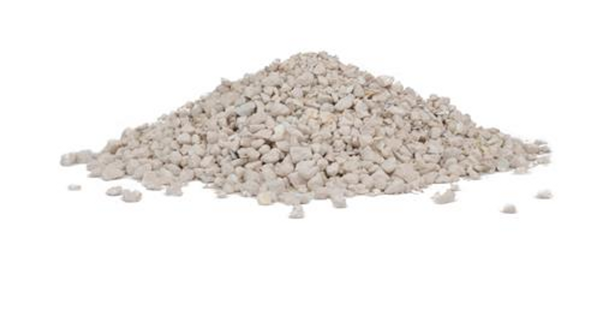 Oyster Shells Lizzie Mae S Bird Seed