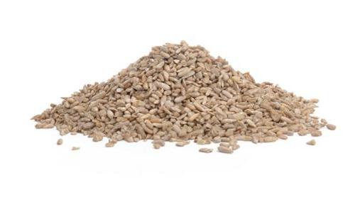 Sunflower Chips - Medium