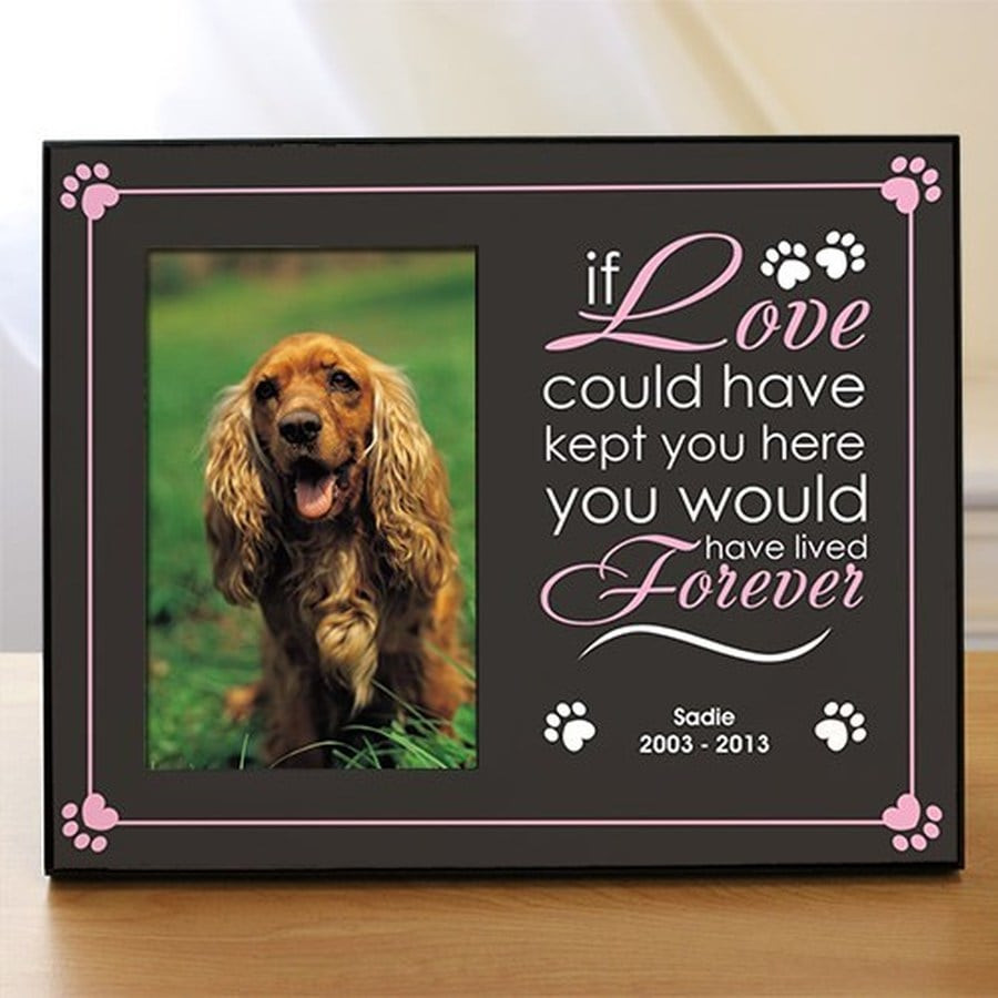 """Personalized memorial pet frame available in pink or blue accents, with the message """"if Love could have kept you here, you would have lived Forever."""""""