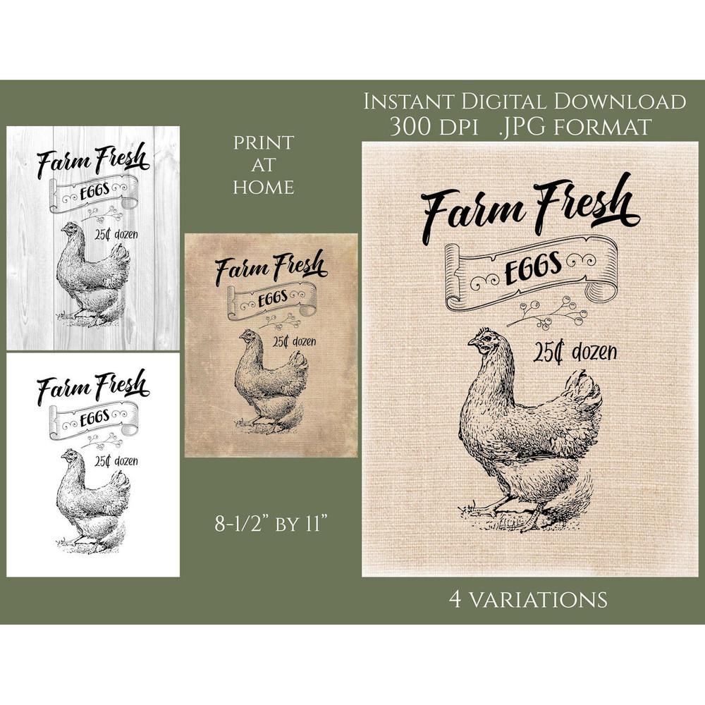 Farm Fresh Chicken Eggs Printable Sign Clarion House Digital