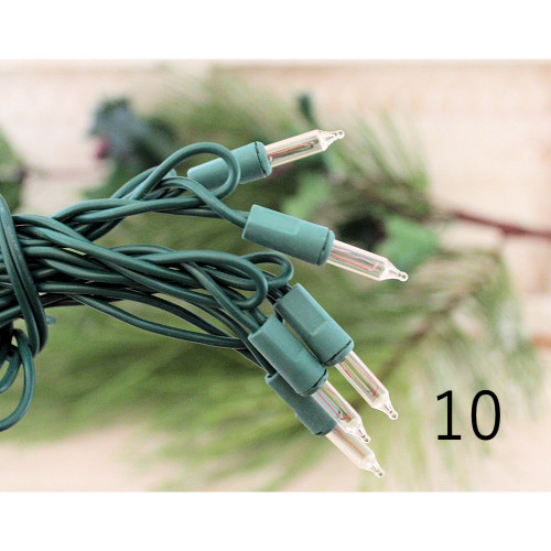 String Lights 10 Clear White Bulbs Green Cord