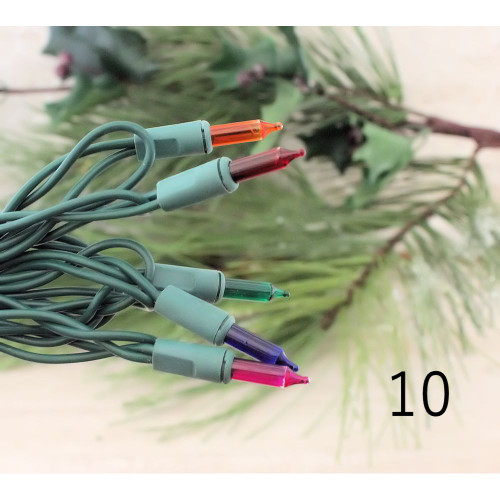 String Lights 10 Multi-Color Bulbs Green Cord