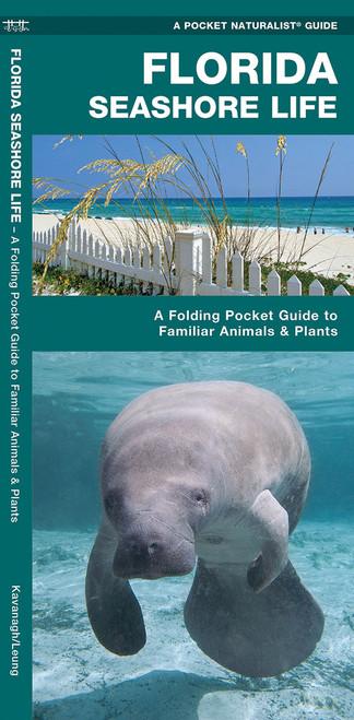 Florida Seashore Life Folding Pocket Guide
