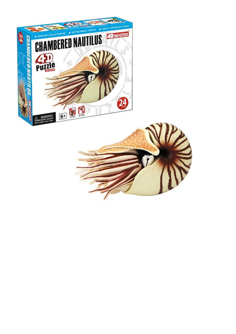 Chambered Nautilus 4D Puzzle