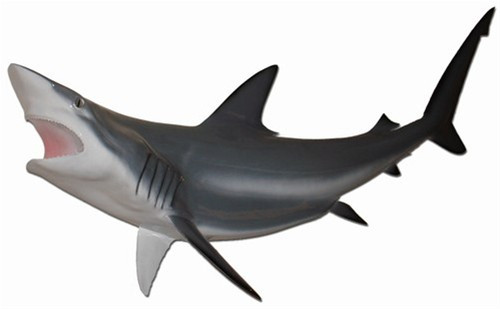 "47"" Shark ""Black Tip Spinner"" Half Mount Fish Replica"