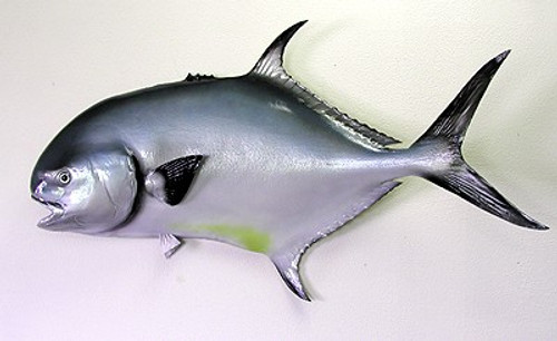 """39"""" Permit Half Mount Fish Replica"""