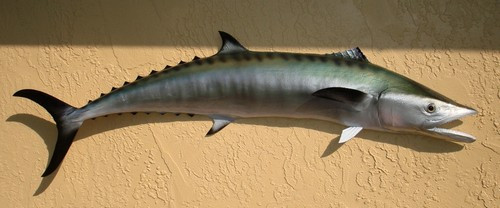 "49"" Kingfish Half Mount Fish Replica"