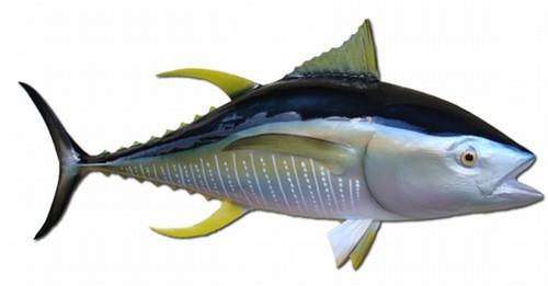 """52"""" Yellowfin Tuna Half Mount Fish Replica"""