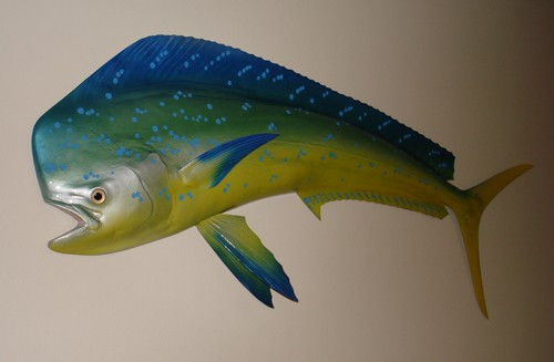 """50"""" Mahi Half Mount Fish Replica"""