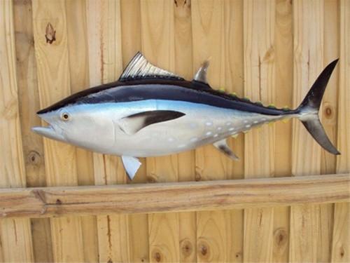 "38"" Bluefin Tuna Half Mount Fish Replica"
