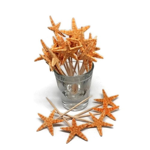 20 Real Starfish Toothpicks for Beach Wedding Shell Tiki Bar Parties