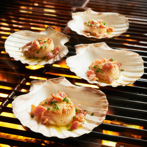 King Scallop Grilling Shells Set of 4, Irish Baking Shells