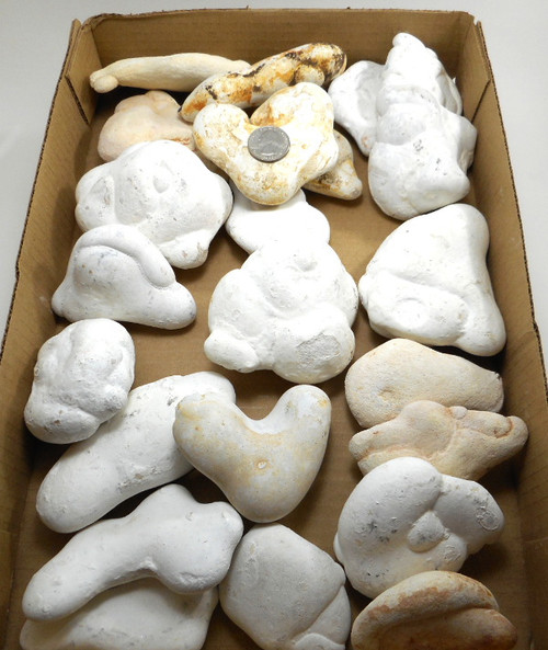 Fairy Stone Concretions, 2nd Quality - Only 1 Flat Available