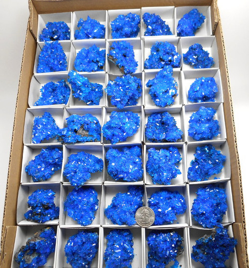 Chalcanthite, By The 1/2 Flat Approx 16 pcs Free Shipping