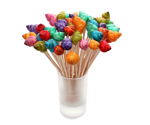 Multi Dyed Seashell Cocktail picks, Shell Toothpicks Free Shipping
