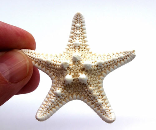 Knobby White Starfish 2 3 Beach Wedding Decor Nautical Crafts