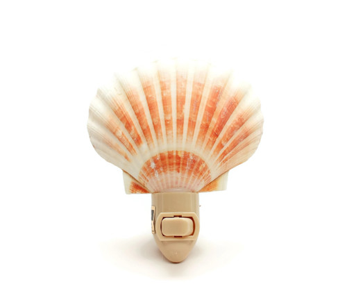 "Scallop Shell Nitelite Seashell Night lights 4"" Sold each"