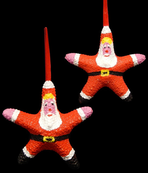 SANTA CLAUS Real Starfish Seashell Christmas Ornament Set of 4