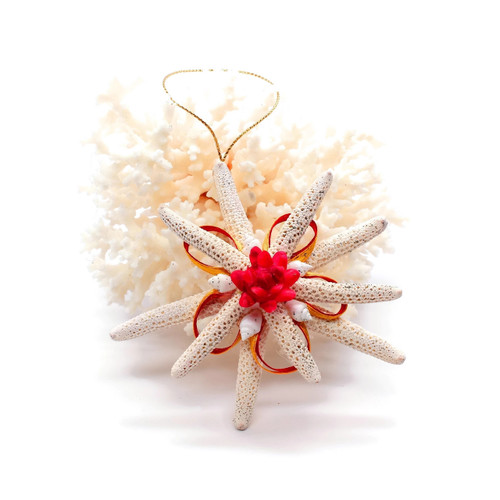 1 Starfish Christmas Ornament Shell flower/Ribbon and Gold string