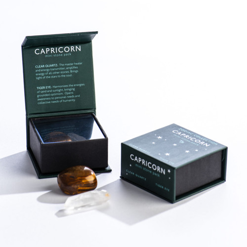 Capricorn Zodiac Mini Stone Pack