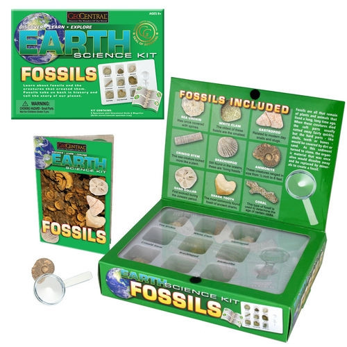 Fossils Earth Science Kit Great Teaching Tool BuytheSea