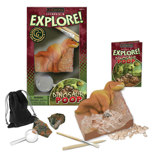Real Dinosaur Fossilized Poop Dig Kit Free Shipping