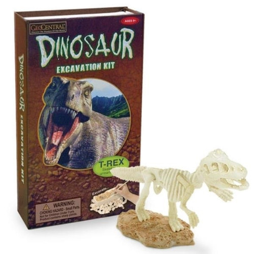 Dinosaur Exploration Dig Kit Free Shipping