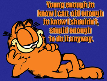 Garfield - Young, Old, & Stupid Metal Sign