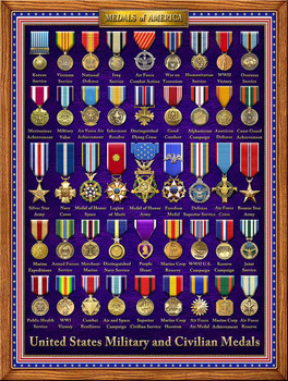 Medals of America by Michael Fishel