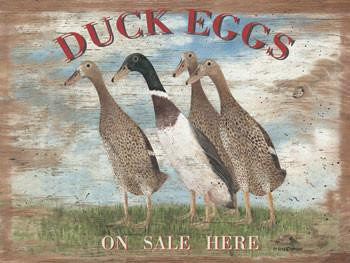 Duck Eggs Metal Sign