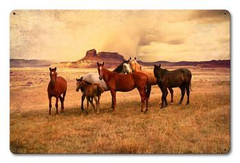 Wild Horses on the Plains