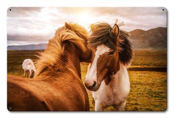 Wild Horses Nuzzling